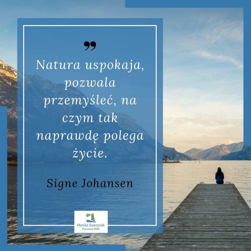 Natura uspokaja pozwala przemyslec naczym taknaprawde polega zycie Signe Johansen monikagawrysiak.pl  1024x1024 - Co daje nam kontakt znaturą?