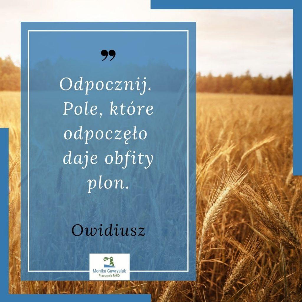 Odpocznij. Pole ktore odpoczelo daje obfity plon Owidiusz monikagawrysiak.pl  1 1024x1024 - Poznaj nasze sprawdzone sposoby naodpoczynek!
